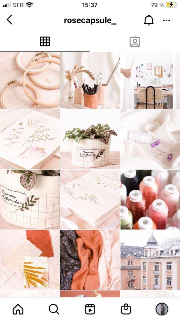 modele-grille-feed-instagram-theme-couleur