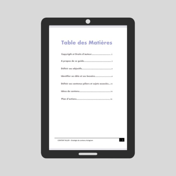 e-book-stratégie-de-contenu-instagram